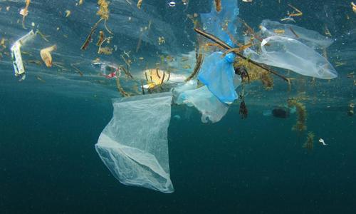 Chế tạo thành công 'lò xo nano' giúp phân hủy nhựa dưới biển