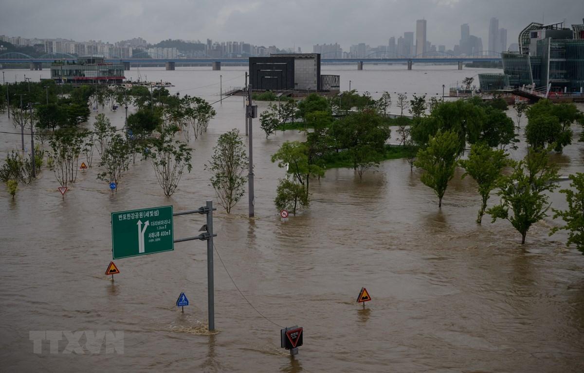 Giới chuyên gia xác định nguyên nhân mưa lũ bất thường tại Hàn Quốc