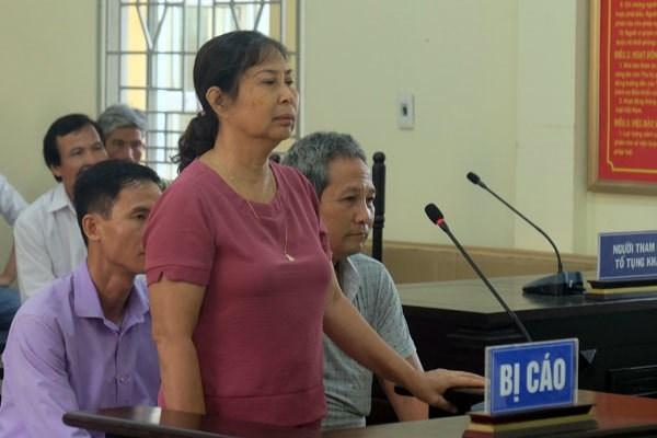 Hà Nội: Triệu tập nhiều người liên quan vụ làm giả hồ sơ sổ đỏ ở Ba Vì