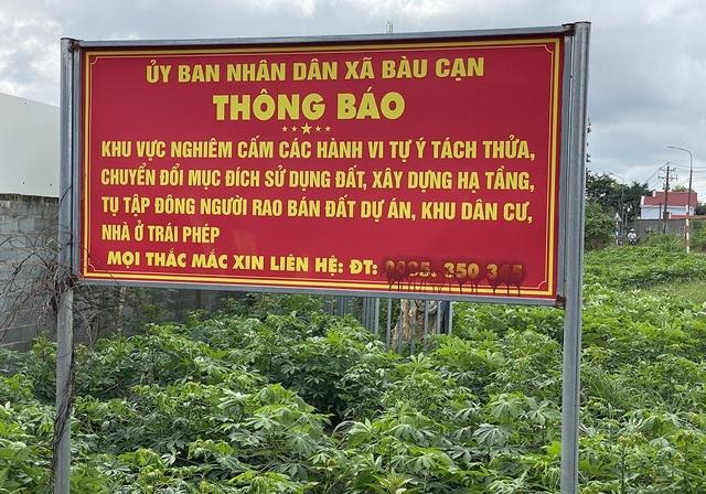 bat dong san dung hinh vi covid 19 co dat van tung chieu tao sot ao