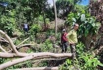 Vi phạm quản lý đất đai ở Kiên Giang: Nhiều lãnh đạo tỉnh xin 'rút kinh nghiệm'