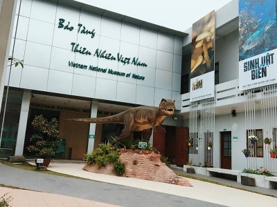 Phê duyệt đồ án Quy hoạch chi tiết Bảo tàng thiên nhiên Việt Nam