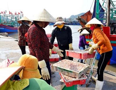 Nghệ An: Phê duyệt quy hoạch chi tiết 1/500 dự án Cảng thủy nội địa tổng hợp Quỳnh Lộc