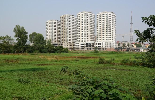 Quy định về việc giao đất, cho thuê đất đối với đất đang có người sử dụng cho người khác