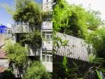Ngôi nhà có mặt tiền bao phủ bởi vườn tre xanh giữa TP Hồ Chí Minh