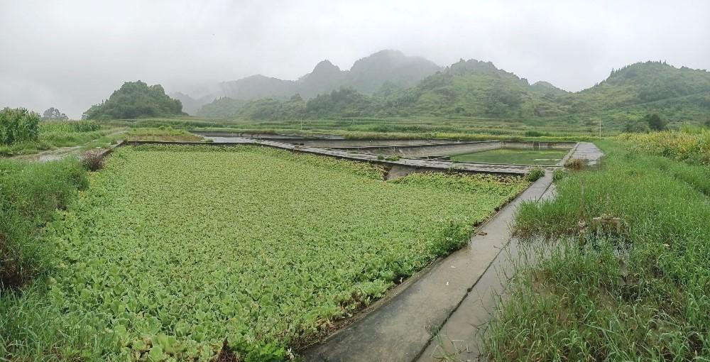 Hà Giang: Dự án vốn ODA cấp thoát nước hàng chục tỷ đồng bị bỏ hoang nhiều năm