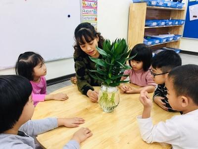 Chương trình Trường học xanh vì một Hà Nội xanh