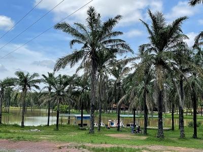 Quảng Trị: Lập quy hoạch công viên Cọ Dầu