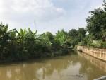 """Tam Đảo (Vĩnh Phúc): """"Bất lực"""" trước hành vi lấn chiếm đất trái phép của người dân"""