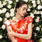 Ngô Thanh Vân - 'Bà trùm' giàu ngầm của showbiz Việt