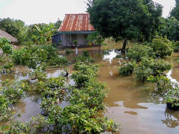 Hỗ trợ ĐBSCL tìm kiếm giải pháp ứng phó với biến đổi khí hậu