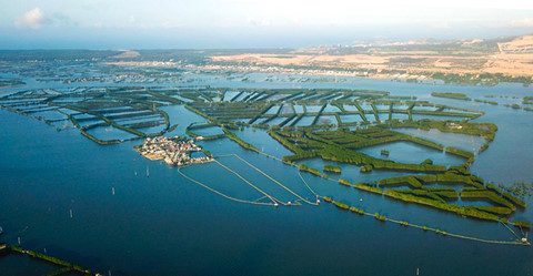 Thu hồi quyết định giao đất làm dự án 5.000 tỷ ở Quy Nhơn
