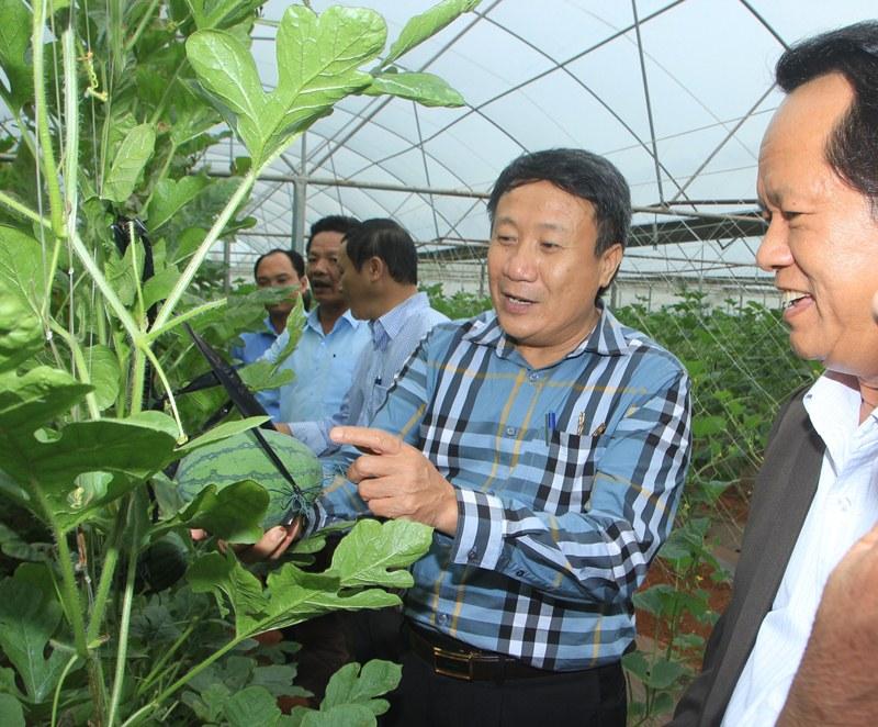 Quảng Trị: Sự lan toả sau một thập kỷ xây dựng Nông thôn mới