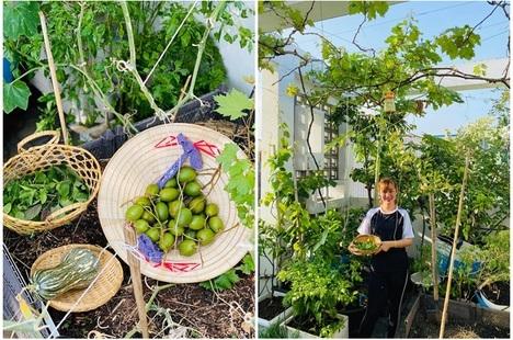 Khu vườn 20m2 rau trái tươi tốt trên sân thượng của vợ chồng trẻ ở Sài Gòn