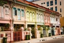 nen van hoa da sac toc dac biet o singapore