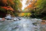 9 nơi ngắm cảnh thu đẹp rực rỡ ở Nhật Bản