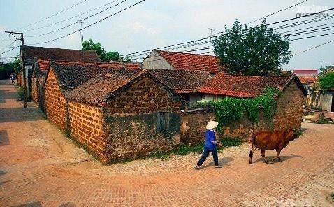 Nẻo đường quê ngoại