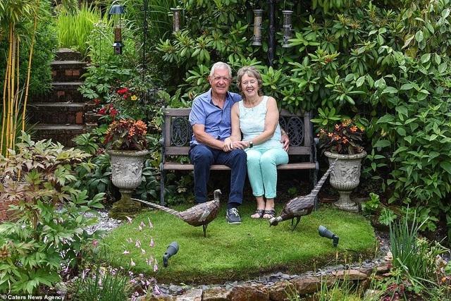 """""""Thiên đường"""" của vợ chồng U70 với loạt cây từ khắp nơi trên thế giới"""