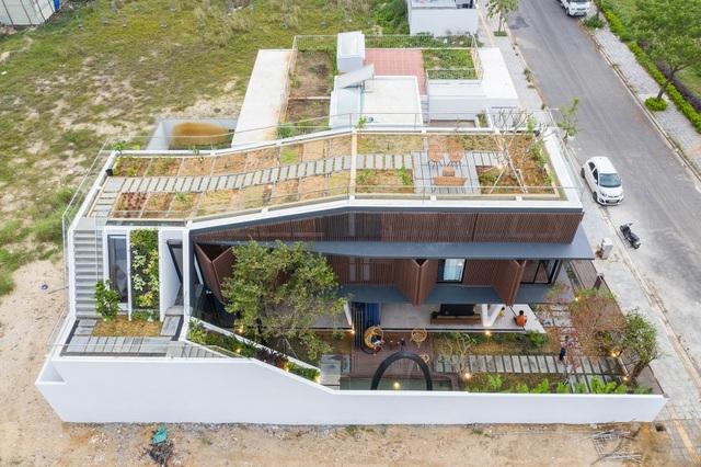 Vợ chồng ở Đà Nẵng đổ đất làm vườn tuyệt đẹp trên sân thượng căn biệt thự