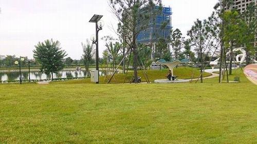 Dự án chung cư Taseco Complex - Trái tim của khu đô thị Đoàn Ngoại Giao