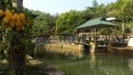 """Hạ Long (Quảng Ninh): Nên hay không nên """"trảm"""" điểm du lịch sinh thái rừng đẹp nhất ở địa phương"""