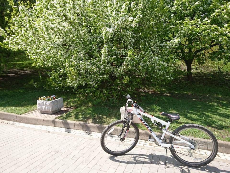 Khám phá công viên Kolomenskoye đẹp nhất nước Nga