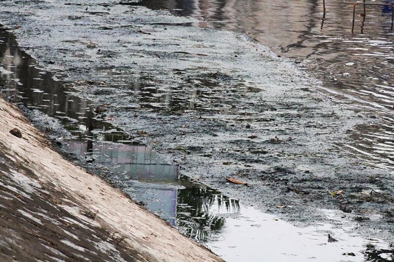 Giải pháp xử lý ô nhiễm sông Tô Lịch: Cần khôi phục sự sống cho dòng sông