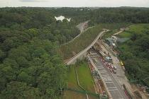 singapore xay cau vuot cho dong vat hoang da