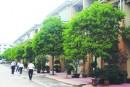 Đô thị hóa nông thôn ở Trung Quốc
