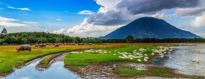 Những điểm đến không thể bỏ qua ở Tây Ninh
