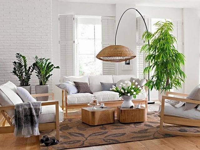 Trang trí phòng khách thế nào để rước tài lộc trong năm mới?