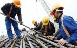 Năm 2019, khoảng 56 triệu lao động có việc làm