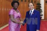 Thủ tướng Nguyễn Xuân Phúc tiếp Giám đốc WB tại Việt Nam