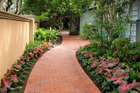 Lối đi sân vườn sang – sáng – sạch với gạch lát - ảnh 1