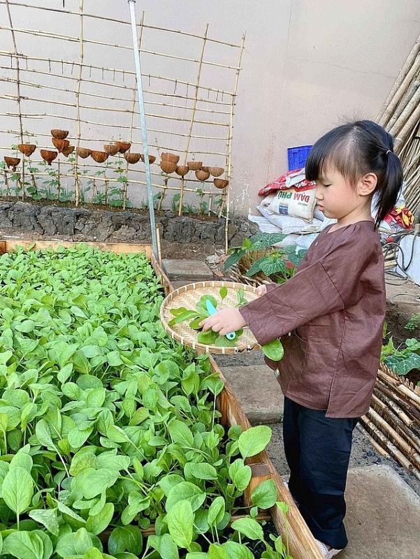 2204 image012 - Bỏ 50 triệu đồng cải tạo vườn chuối thành khu sinh thái trong mơ