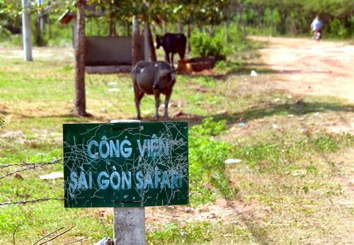 Dự án Sài Gòn Safari gây thất thoát hơn 100 tỷ đồng