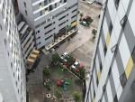 Sắc xanh đô thị: Yếu tố cần thiết tạo không gian xanh