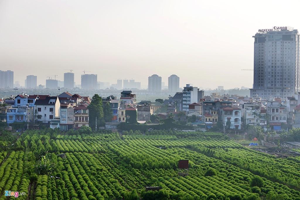 Vùng ven đô thị