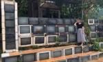 Ngôi nhà rào bằng tivi ở Phú Quốc lên báo nước ngoài