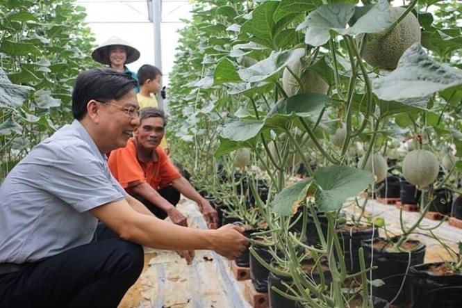 Chương trình nông thôn mới ở Thạch Sơn: Xứ cát bỏng trở mình