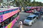 Độc đáo tour tham quan Sơn Trà Đà Nẵng với Coco Bus Tour