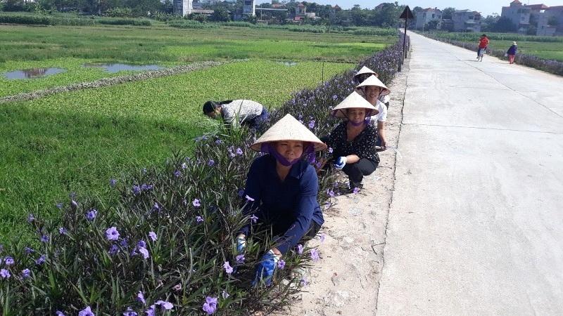 Lập Thạch (Vĩnh Phúc): Xã Thái Hoà xây dựng Nông thôn mới nâng cao