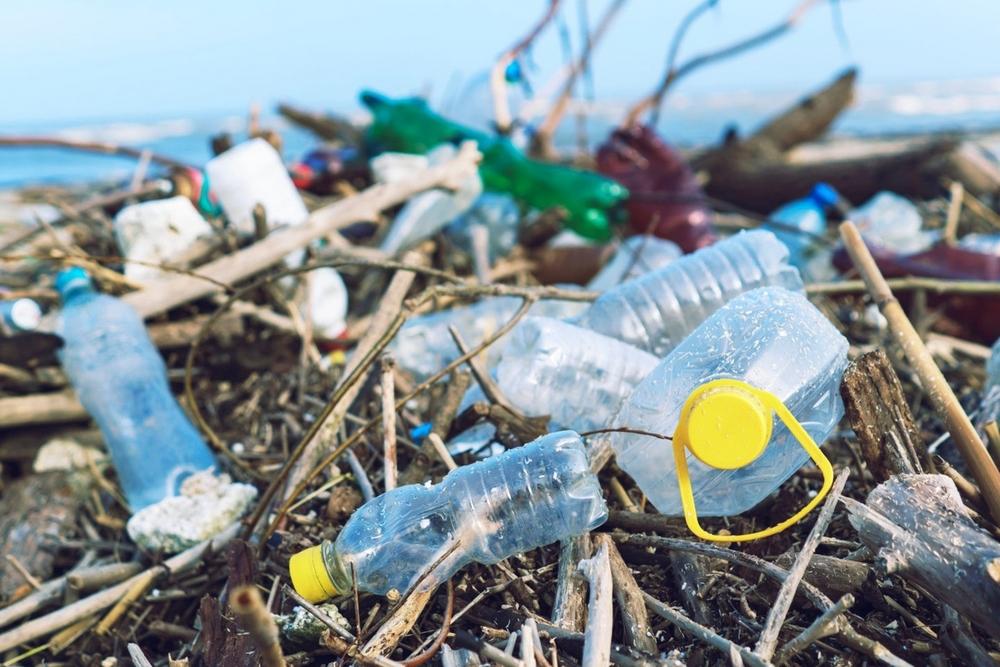 Mối nguy rác thải nhựa