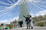 Những cây thông Noel đặc biệt đang khiến du khách phát sốt với Lễ hội mùa đông Fansipan
