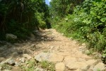 Tuyến đường 500 tỷ vùi lấp giữa rừng ở Thừa Thiên - Huế: Kỷ luật một Thiếu tướng quân đội