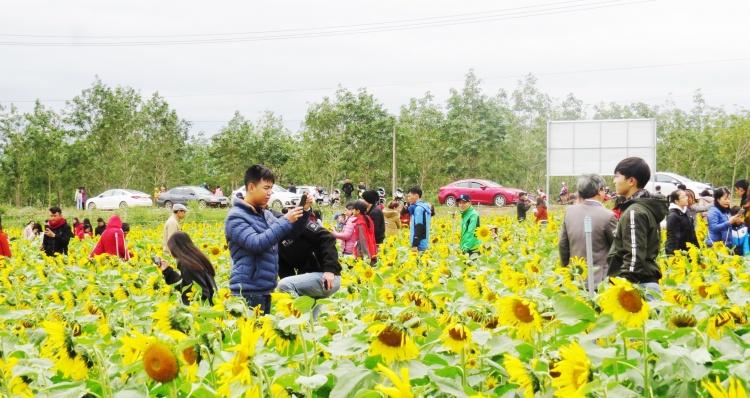 Quảng Bình: Xuân về rộn ràng trên làng hoa Lý Trạch