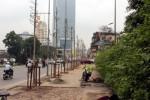 Từ 1/8, Hà Nội sẽ trồng lại cây trên đường Nguyễn Chí Thanh
