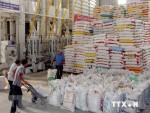 Vietnam-Africa trade reaches 6.6 billion USD in 2018
