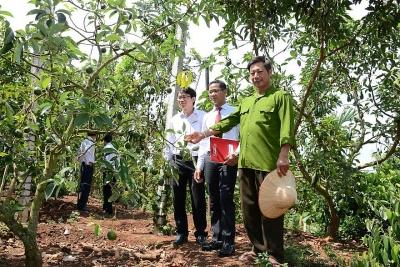 Agribank - Ngân hàng chủ lực cung ứng vốn cho tam nông, tạo động lực tăng trưởng kinh tế