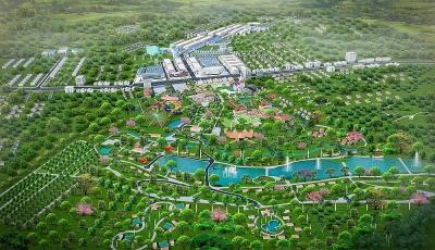 Felicia City Bình Phước thu hút nhà đầu tư nhờ đã hoàn tất pháp lý